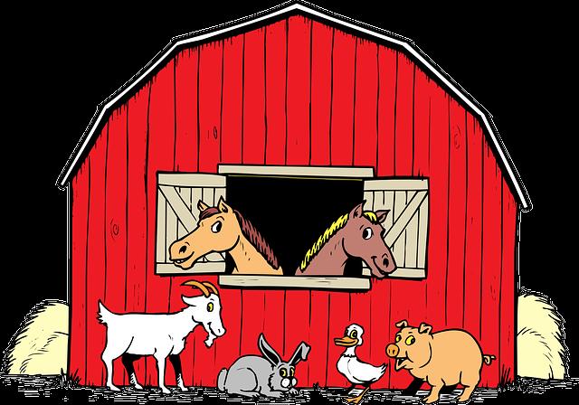 Animals, Barn, Duck, Pig, Goat, Horses, Rabbit, Hay