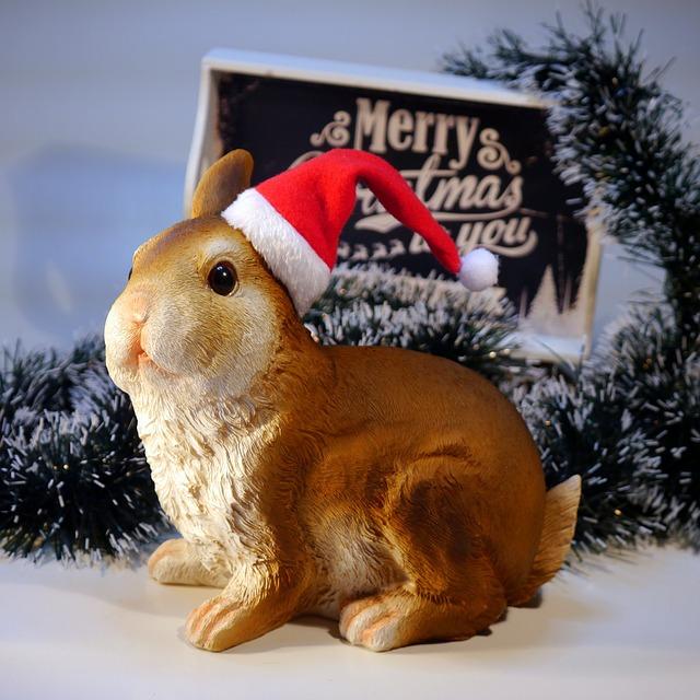 Nicholas, Christmas, Hare, Rabbit
