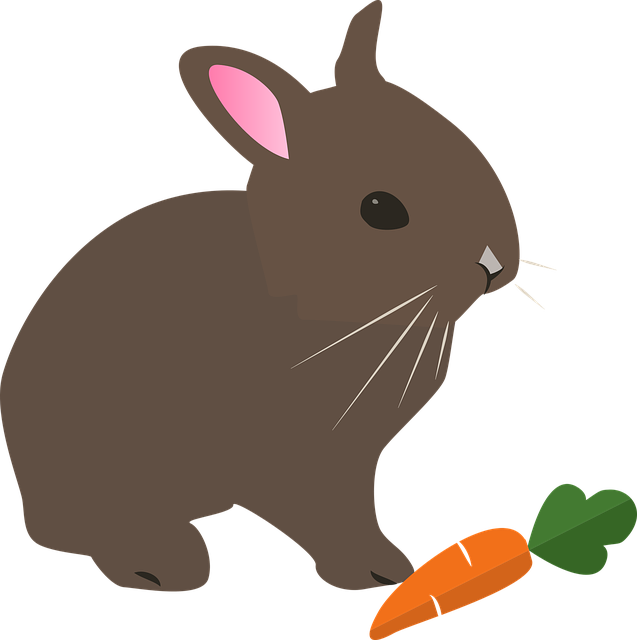 Hare, Rabbit, Easter, Animal, Pet, Nature, Spring