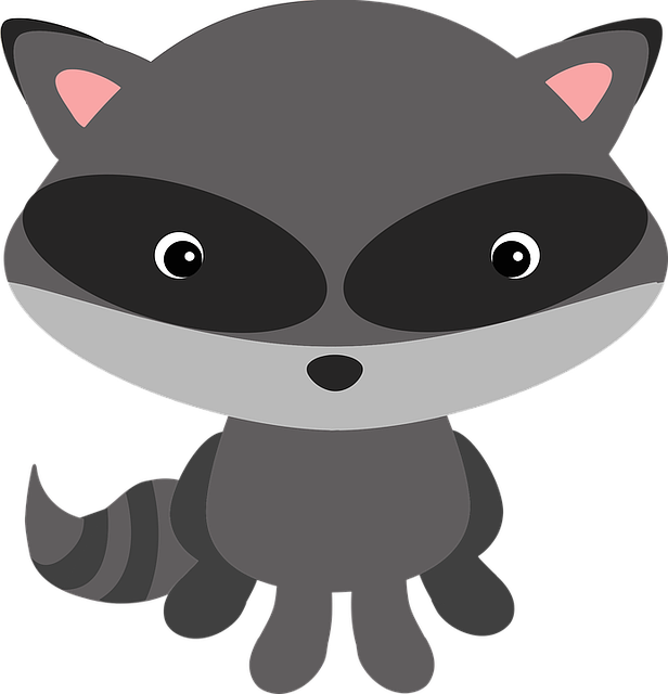Raccoon, Woodland, Animal, Masked, Adorable