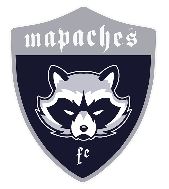 Shields, Raccoons, Football, Coat Of Arms