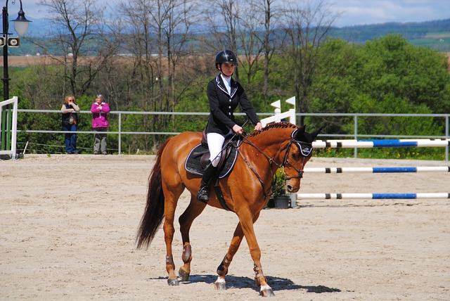 Horse, Mare, Redhead Horse, Race
