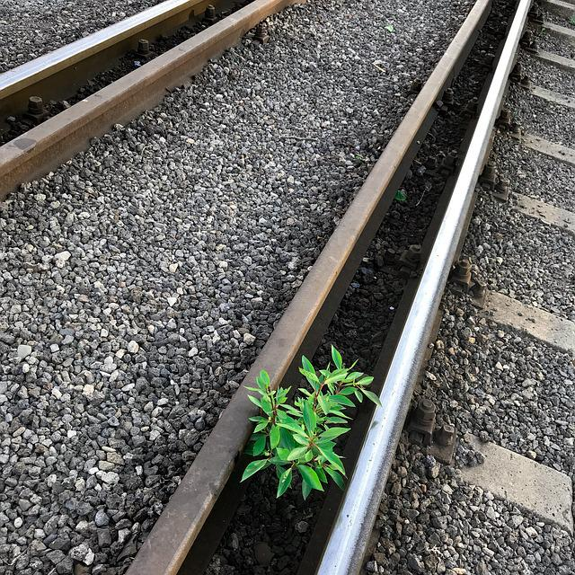 Railway, Railway Track, Train, Racecourse, Gravel
