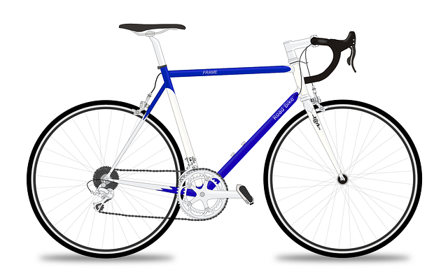 Racing Bicycle, Racer, Racing Bike, Bicycle, Bike