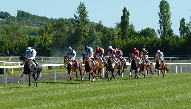 Horse Race, Hippodrome, Horses, Jockeys, Horse, Racing