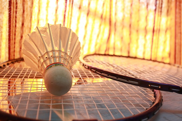 Badminton, Game, Shuttlecock, Sports, Racquet