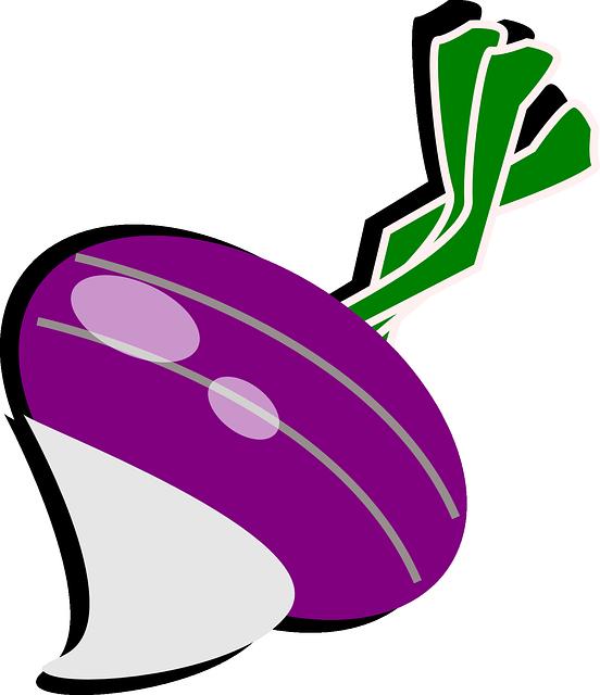 Turnip, Radish, Cultivated Radish, Garden Radish