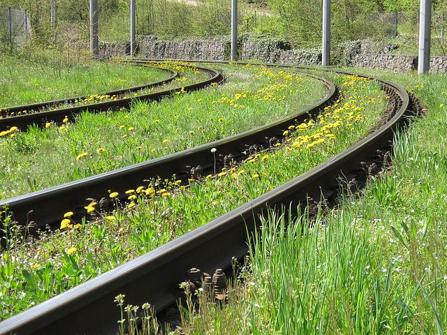 Railroad Track, Track, Seemed, Rail Traffic, Track Bed