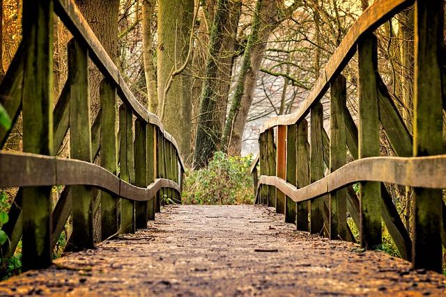 Away, Bridge, Wood, Nature, Railing, Pedestrian Bridge