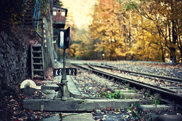Track, Points, Leaves, Railway