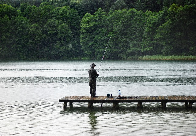 Angler, Rain, Hunting, Fishing, Catch, Poland, Water