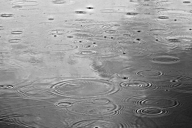 Rain, Rain Drops, Water, Rain On Water, Pond