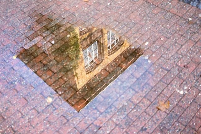 Mirroring, Puddle, Building, Architecture, Rain, Water