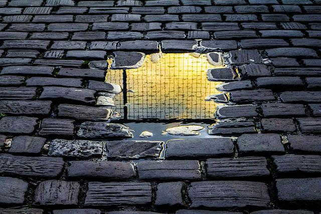 Reflection, Brick Road, Rain, Fence, Freedom