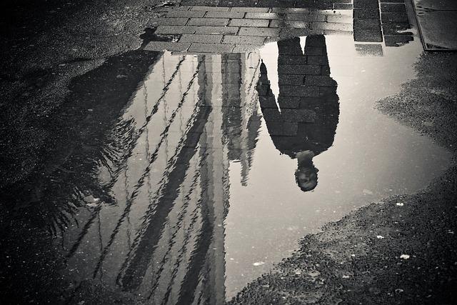 Rain, Puddle, Water, Mirroring, Wet, Weather, Raining