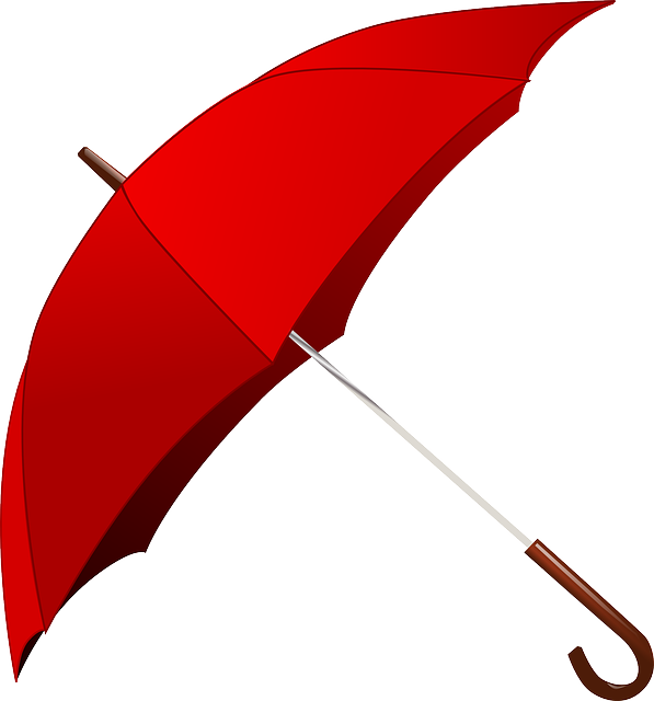 Umbrella, Rain, Red, Weather, Campbellvalley