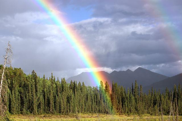 Rainbow, Rain, Arch, Toad River, Rainbow Colors