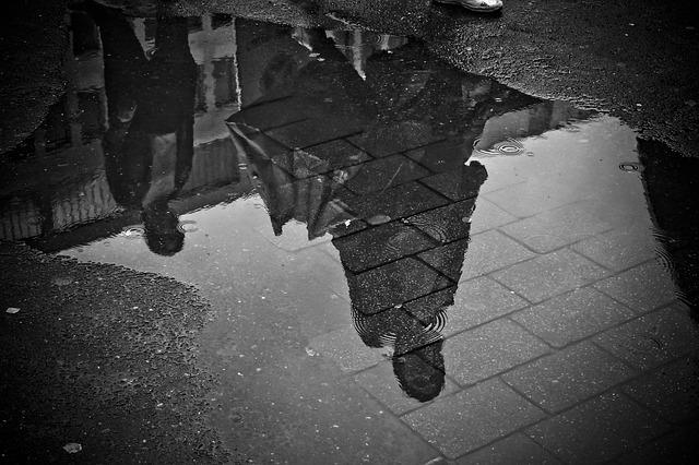Rain, Puddle, Water, Mirroring, Wet, Weather, Raining