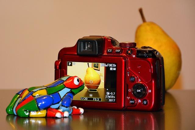Photographer, Rana, Camera, Pera, Passion, Photograph