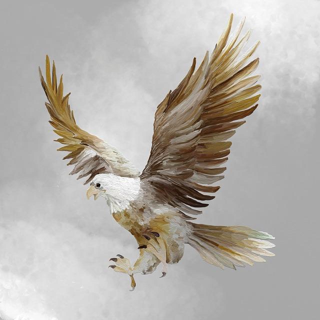 Adler, Fly, Raptor, Bird Of Prey, Animal, Wild Bird