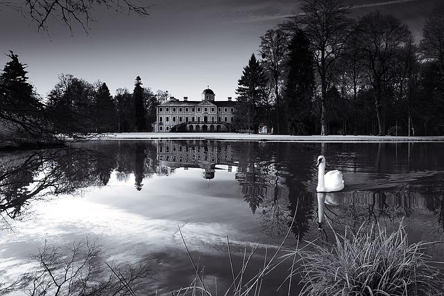 Concluded Favorite, Rastatt, Park, Pond, Swan