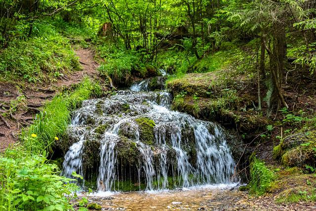 Rattlesnake Creek, Creek, Stream, Body Of Water