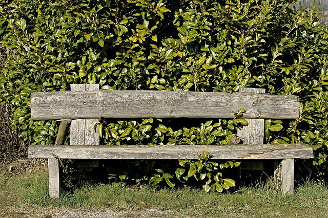 Tranquility Base, Wooden Bench, Bank, Rest, Recovery