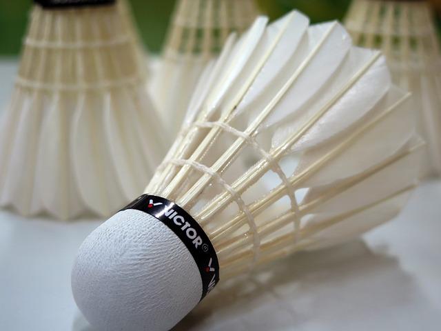 Badminton, Ball, Sport, Leisure, Recreational Sports