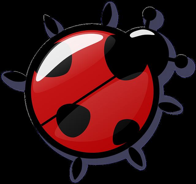 Ladybug, Red, Reflection, 4