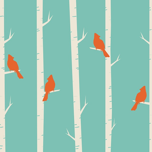 Birds, Tree, Birch, Birch Trees, Cardinal, Red Cardinal