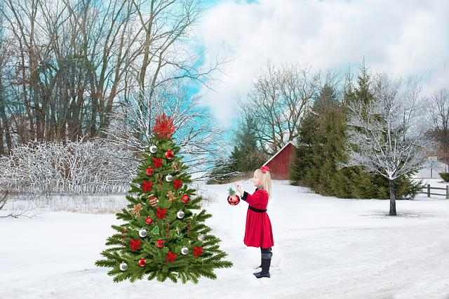 Christmas, Red, Snow, Tree, Girl, Decoration, Holiday