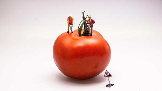 Tomato, Food, Vegetable, Red, Construction, Work Area