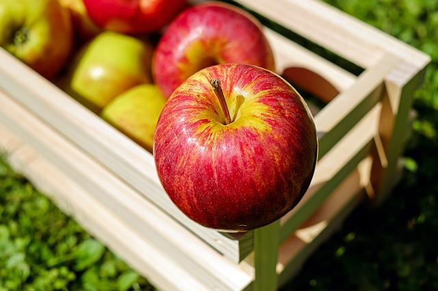 Apple, Red, Fruit, Fruits, Frisch, Harvest