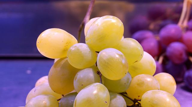 Grape, Muscatel, Cluster, White Grape, Red Grape