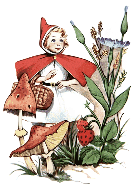 Little Red Riding Hood, Red Hood, Forest, Fairy Tales