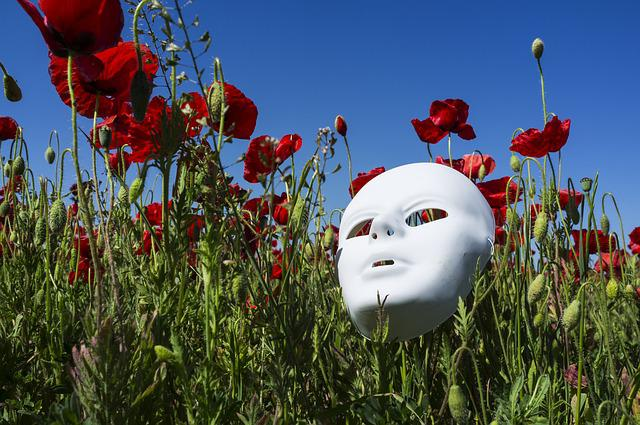 Mask, Poppies, Field, Red, Nature, Poppy Flower