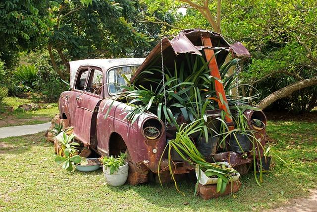 Vintage Car, Plants Under Bonnet, Car, Old, Red, Faded