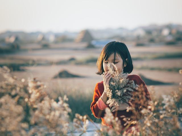 Girl, Reeds, Field, Sunset
