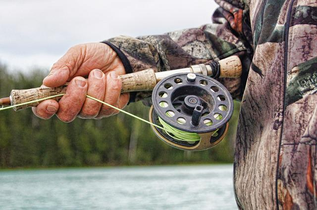 Fisherman, Fishing, Reel, River, Rod, Fish, Catch
