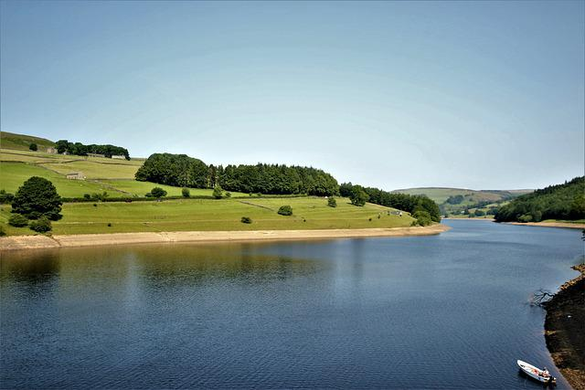 Lake, Water, Nature, Landscape, Tree, Calm, Reflection