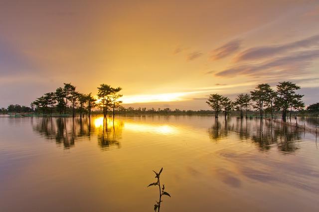 Sunset, Water, Dawn, Reflection, Sun