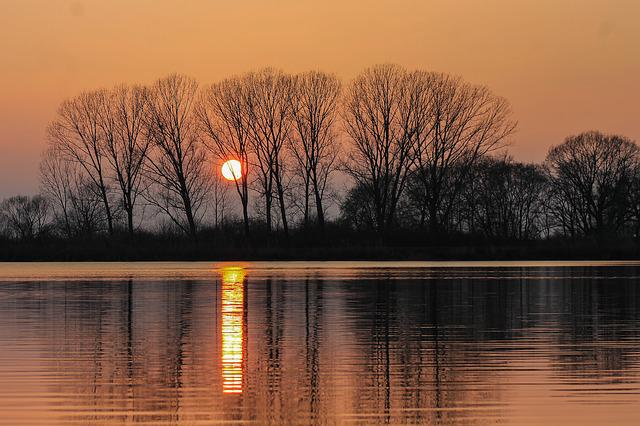 Sunset, Trees, Water Surface, Reflection