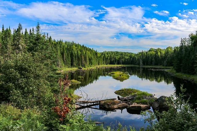 Nature, Waters, Lake, Reflection, Sky, Landscape