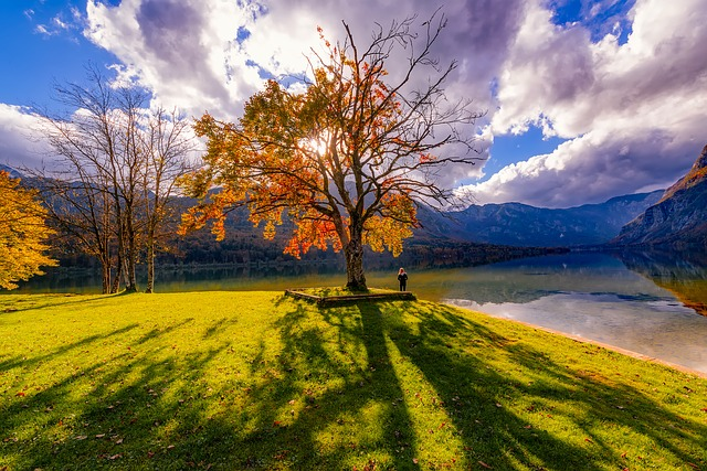 Slovenia, Lake, Water, Reflections, Sky, Clouds, Autumn