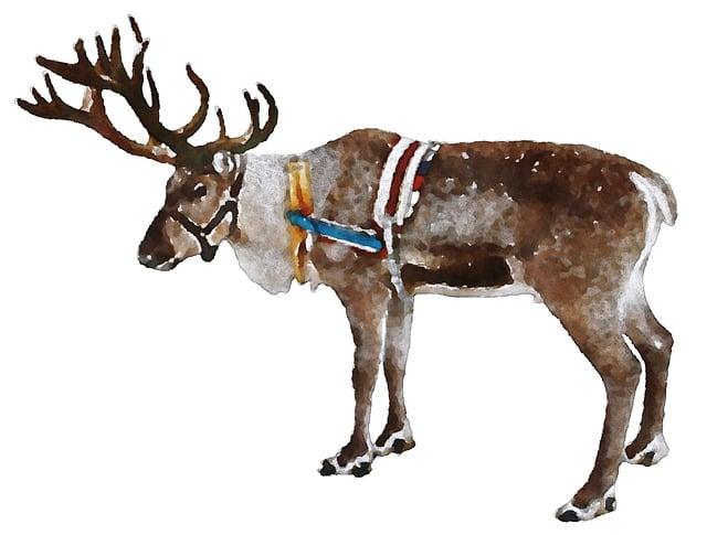 Reindeer, Christmas, Watercolor, Animal, Oekaki
