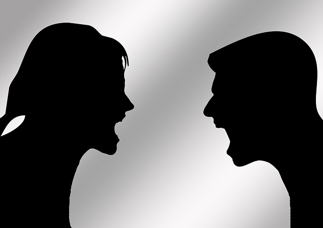 Pair, Man, Woman, Discussion, Difference, Relationship
