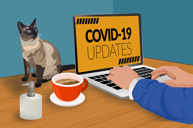 Covid-19, Work From Home, Quarantine, Remote Work