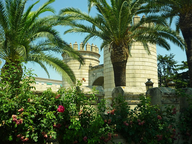 Door, Wall, Palms, Badajoz, Renaissance, Gardens
