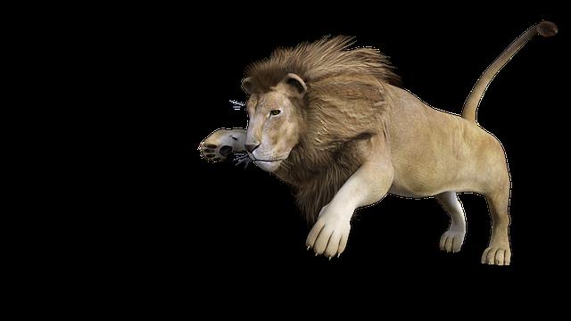 Lion, Males, 3d, Model, Figure, Rendering, 3d Model