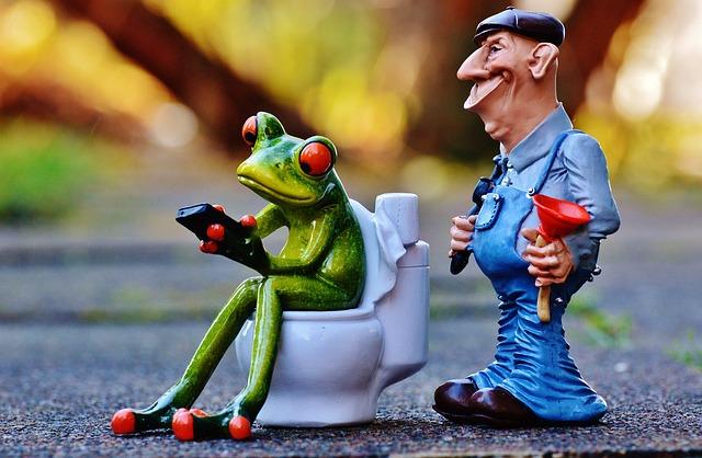 Plumber, Frog, Loo, Pömpel, Repair, Session, Blocked